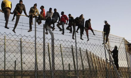 Open border supporters are not looking out for our best interest