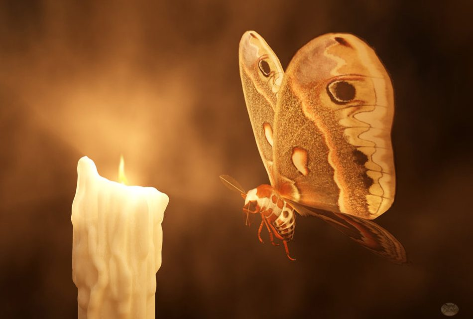Beto O'Rourke: Don't be a Moth Drawn into the Fire
