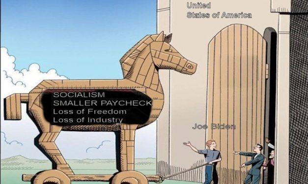 The Trojan Horse Ticket of Biden and Harris